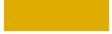 Saleem Music Logo